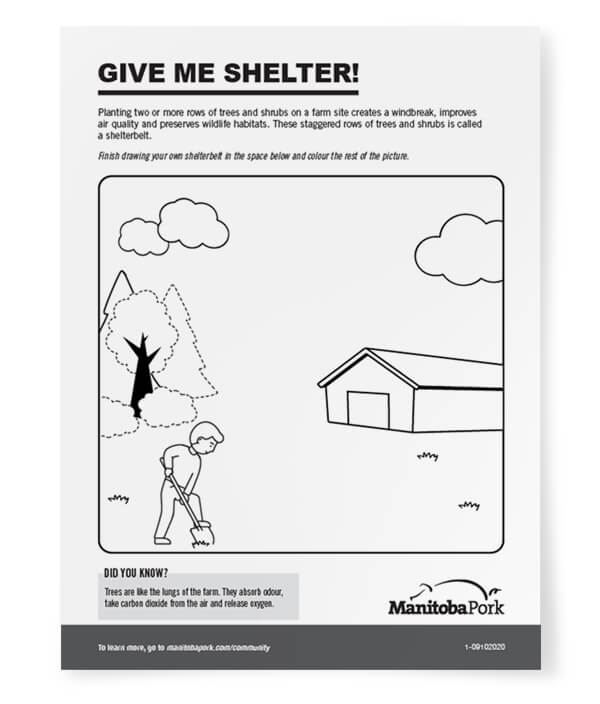 Drawing: Give Me Shelter!