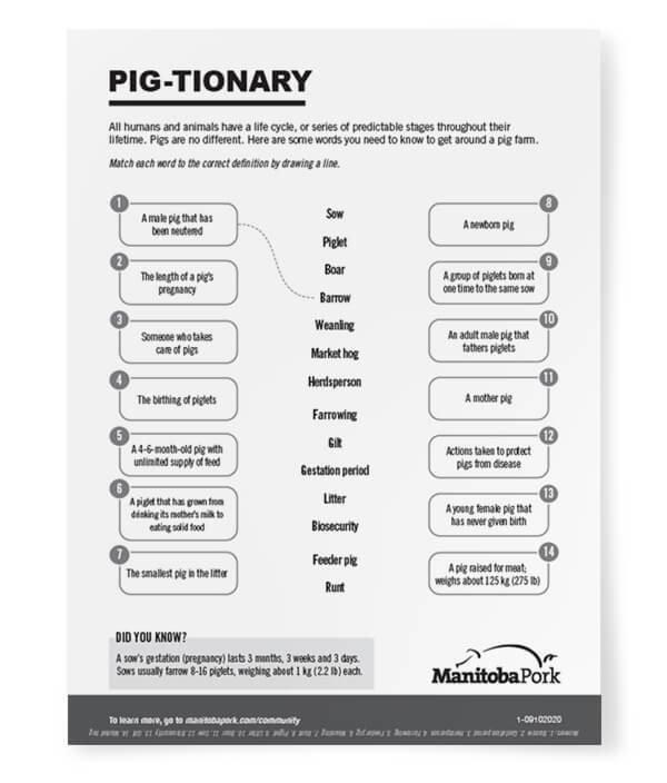 Word Match: Pig-tionary