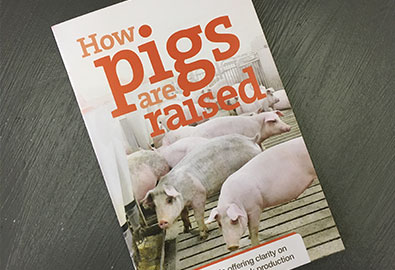 How Pigs are Raised