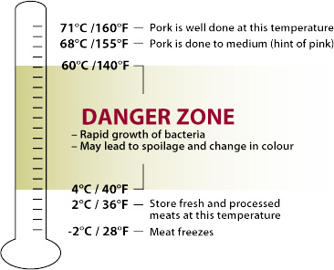 Food temperature safety guide
