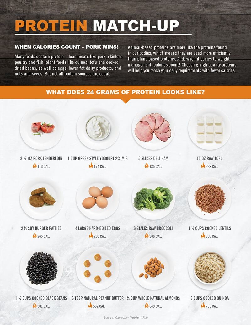 resources protein match up